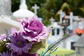 cementerio-948048_960_720
