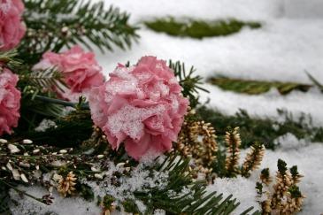 cemetery-flowers-500341_960_720