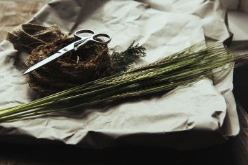 grass-984100_1920