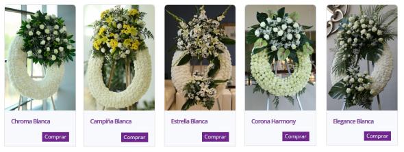coronas blancas.png